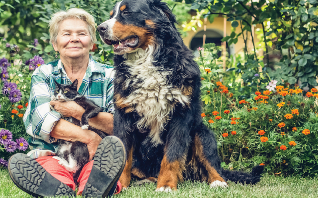 Elderly woman with elderly pets